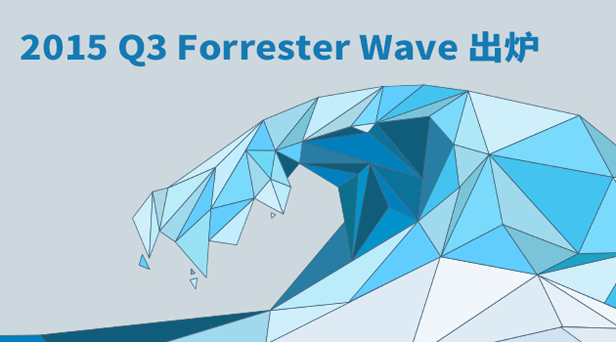banner-forrester-wave-2013